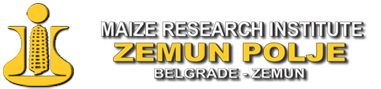 logo_zemun_polje