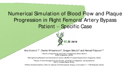 1.P3 Vulovic – Numerical Simulation of Blood Flow and Plaque Progression in Right Femoral Artery Bypass Patient-Specific Case